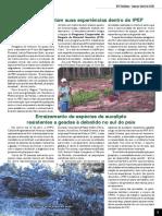 Informativo - IPEF Notícias - Estagiários contam experiências