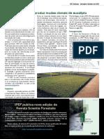 Informativo - IPEF Notícias - Outubro/2010