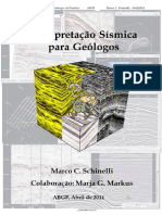 Interpretação Sísmica Para Geólogos