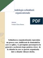 Metodologia Schimbarii Organizationale