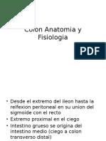Colon Anatomia y Fisiologia