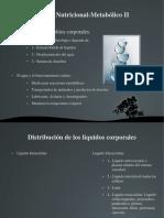 3+Nutricional+Metabólico+II.pdf