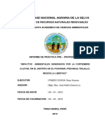 IMPACTOS AMBIENTALES GENERADOS POR LA CURTIEMBRE D-LEYSE, EN EL DISTRITO DE EL PORVENIR, PROVINCIA TRUJILLO, REGION LA LIBERTAD.pdf