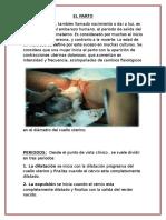 EL-PARTO.docx