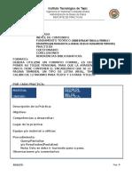 Formato de Reporte de Practicas