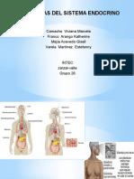 diapositivas hipotiroidismo
