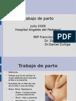 20090803_trabajo_de_parto.ppt