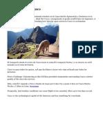 Tourist Guide In Cusco