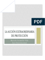 Acccion Extraordinaria de Proteccion