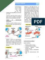 3. Transducción de Señales - Fisiología I