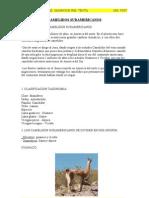 INFORME2. CAMELIDOS SUDAMERICANOS