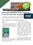 POPULAÇÃO INDIGNADA Animais Domésticos e de Rua São Envenenados Em Queimadas