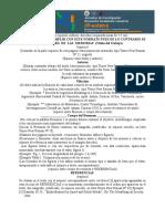 Formato_de_resumen_jifi_2012 (1).doc
