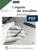 INJERTO DE ESCUDETE