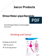 Dr Elif Dagli's presentation on water pipe (before World Cancer Day 2016)