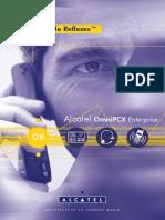 OXE Dect100 200 en Manual