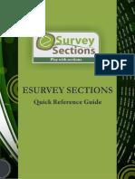 ESurveySection