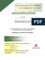 Complément Mémoire Strat-RSE Aurélien VERNET