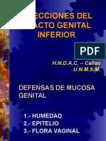 Infecciones del tracto genital inferior