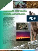 Reportaje Carlos Sanz en revista PáginA-1 (dic.2009)
