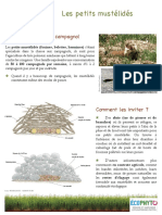 les prédateurs du campagnol provençal