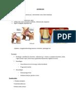 Reumatológiai fizioterápia összefoglaló