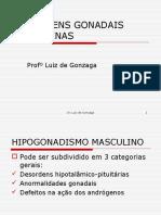 18 - HIPOGONADISMO MASCULINO.ppt