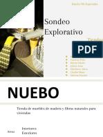 Sondeo Exploratori_Tiendas