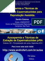 azoospermiaetcnicasdeextraodeespermatozidespararaestevessapientiaeset2012-121004142913-phpapp02.pdf