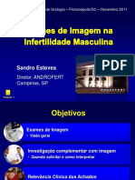 examesdeimagemnainfertilidademasculinaesteves-slideshare-111202123449-phpapp01 (2).pdf