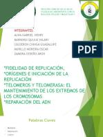 Exposición Grupo #3 Fidelidad De La Replicacion / Primer Parcial