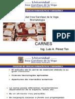 UIGV Carnes