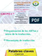 Exposicion Grupo #7 Inicio De La Traduccion  / Primer Parcial
