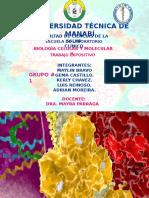 Exposición Grupo 1   VIRUS ARN Y TRANSCRIPCIÓN  INVERSA / SEGUNDO PARCIAL