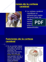 2_funciones_corteza_cerebral.ppt