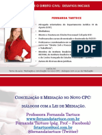 Aula 4 - Pal  14 1 2016 - Dra  Fernanda Tartuce.pdf