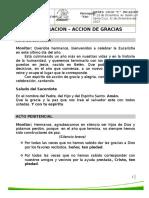 Monicion Accion de Gracias Ciclo c 31-12-2015