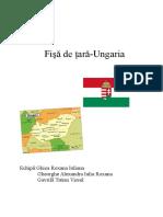 Fişă de Ţară-Ungaria