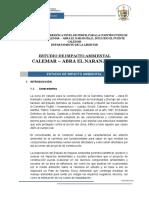 INFORME FINAL del EIA Calemar- Abra El Naranjillo.doc