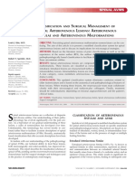 Classification and Surgical Management of Spinal 22