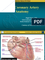 Basic Coronary Anatomy - Paul Fefer, MD.