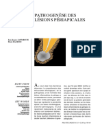 Article Pathogenc3a8se Des Lc3a9sions Pc3a9riapicales