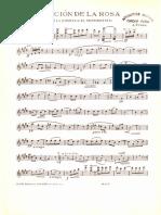 Pretendiente Violin