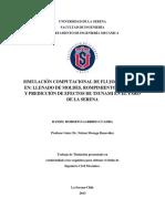 Tesis 'Simulación de tsunamis y rompimiento de represas' Daniel Garrido