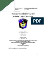 Referat & Lapsus Ulkus Kornea