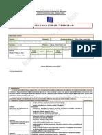 1 Plan Analitico Desarrollo Proc Cognoscitivos Pedro Rojas