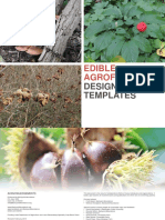 Edible Agro Forestry Templates