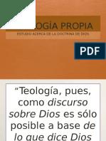 Teologia propia introducción e idolatría