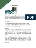 Ciclo de Vida de las Tortugas Marinas.docx