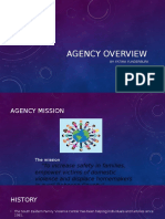 agency overview-2